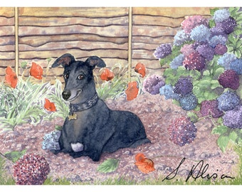 Keen gardener greyhound 8x10 art print