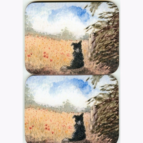 2 x Border Collie dog landscape coasters