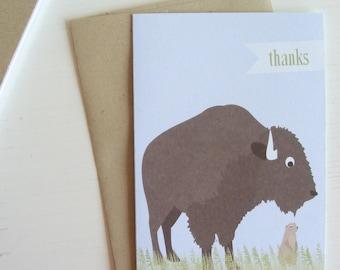 buffalo - boxed note card set