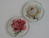 Rose Magnets