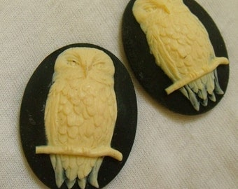 Owl Ivory and Black 40x30mm Cameos in Resin 2