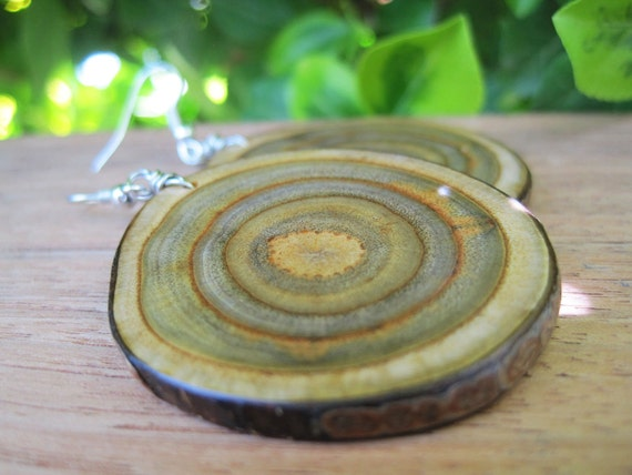 Wood Earrings - Branch Jewelry - Large and Oval - Sumac - Green - Target - Spiral - Grain -3D