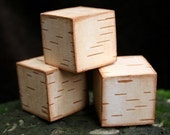Birch Bark Blocks - Set of 3 Rustic Birch Blocks for Rustic Decor