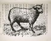 Sheep Print on Vintage Book Page - 5 x 7
