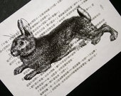 Rabbit Print on Vintage Chinese Book Page - Year of the Rabbit - 5 x 7