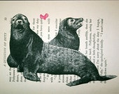 Sea Lion Love Print on Vintage Book Page - 5 x 7