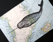 Narwhal Print on Arctic Map Greenland and Iceland - 5 x 7 Narwhal Map Print