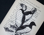 Puffins Print on Vintage Book Page - 5 x 7