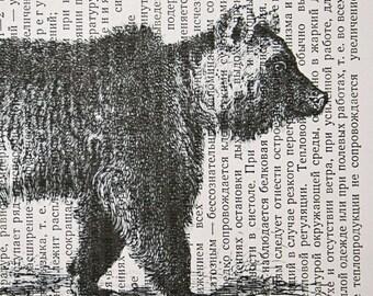 Bear Print on Vintage Russian Book Page - 5 x 7 Boris the Bear