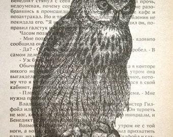 Owl Print - Vintage Russian Book Page Print - 5 x 7  Owl Art Nature Art Bird Print
