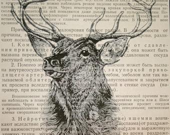 Deer Print - Vintage Russian Book Page Print - 5 x 7 Deer Head Print - Deer Art - Wildlife Art - Stag Head Print