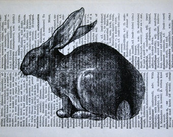 Rabbit Print - Vintage French Dictionary Print - 5 x 7 Bunny Print for Easter - Easter Bunny Print