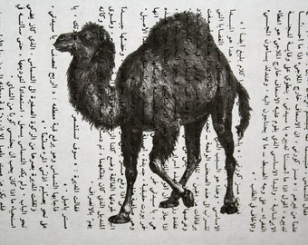 Camel Print on Vintage Arabic Book Page - 5 x 7