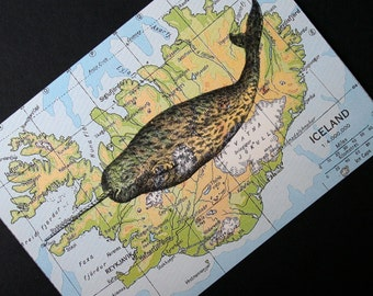 Narwhal Print on Map of Iceland - 5 x 7 Narwhal Map Print
