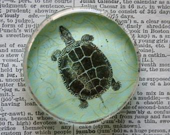 Turtle Magnet - Jumbo Glass Magnet