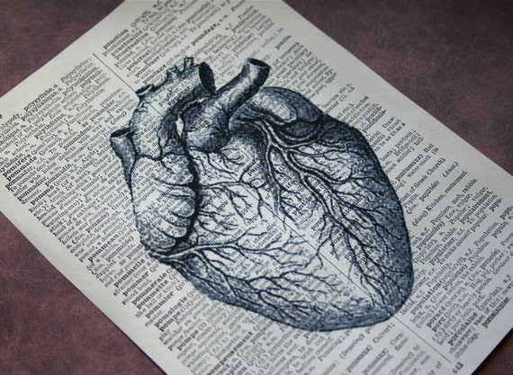 Anatomical Heart Print on Vintage French-English Dictionary - 5 x 7 Valentines Day Print