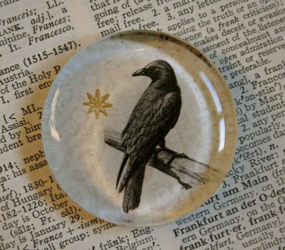 Crow Magnet - Jumbo Glass Magnet - Black Crow or Raven