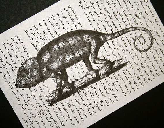 Chameleon Print on Vintage Arabic Text Book Page - 5 x 7