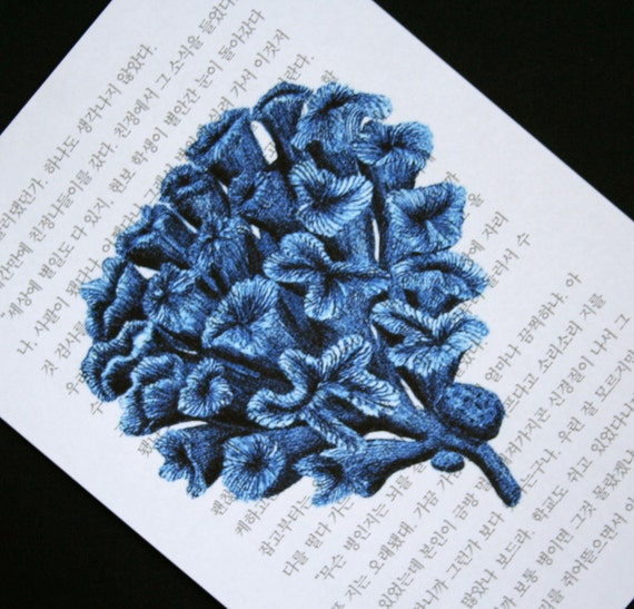 Coral Print on Korean Book Page - 5 x 7  Blue Coral