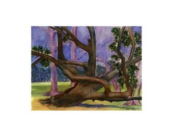 Tree at Twilight