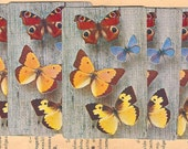 5 Vintage Playing Cards - Butterflies on Grey Board