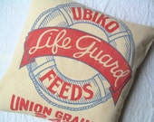 Grain Sack Pillow - 22 Inches