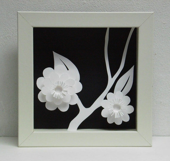 White Camellias in Black background