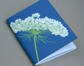 Queen Anne's Lace Pocket Notebook Flower Wildflower White Blue Spring Woodland Natural History Botanic