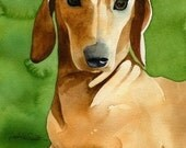 Dachshund weiner dog art print from watercolor painting by Rachelle Smith plus FREE card