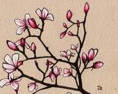 Spring Magnolia's (8x8 Signed Fine Art Giclee Print)