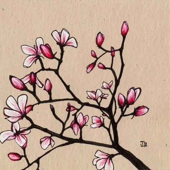 Spring Magnolia's (8x8 Signed Fine Art Giclee Print)