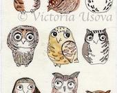 Sleepy Time Owls 8x10 print