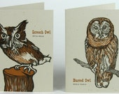 SCREECH and BARRED OWLS and 4 Pack of Hand Lino Cut Letterpress Greeting Cards
