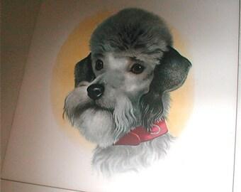 Poodle Ceramic Tile Trivet or Wall Hanging - Vintage 1960s - Sir Spencer the Poodle