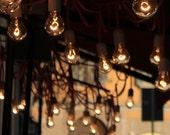 light bulb in the morning