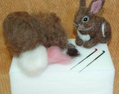 OOAK Needle Felted BUNNY Rabbit KIT 4 Beginners.Instruction book plus supplies to make your own felted bunny