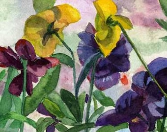 Pansy Field Purple Yellow watercolor Giclee Reproduction 4x11