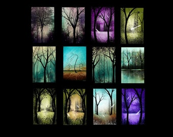 Landscape and Scenic Tree Art MIni Print Collection of 12 - Bare Trees - Woodland - Nature - Dragonflies - Fantasy