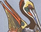 BROWN PELICAN blank bird greeting card