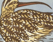 LONG-BILLED CURLEW original linocut hand colored bird block print