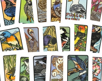 PICK ANY 6 Flock bird greeting cards