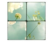 Flower art - flower photography - Fine art photography print -  A set of prints -  Flowers and sky - Ttv - Floral - Green