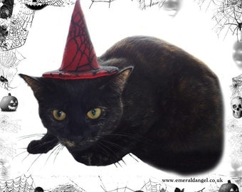 Spider Web Lace Pet Witch Hat, Halloween, Pet Costume