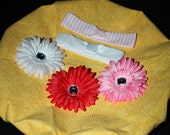 Pretty 5  PIECE PRINCESS STARTER KIT.......3 FLOWER CLIPS ...... With  2  MATCHING HEAD BANDS by I Luv U Tutu Much Boutique as featured by Parents Magazine