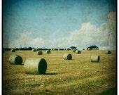 Harvest III - Signed Fine Art Photograph