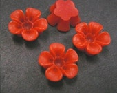 6pc 14mm Resin Flower Cabochon-3722