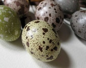 Five Speckled Eggs - a selection of plaster bird's eggs painted in greens, greys and browns, handmade in Australia by Kuberstore