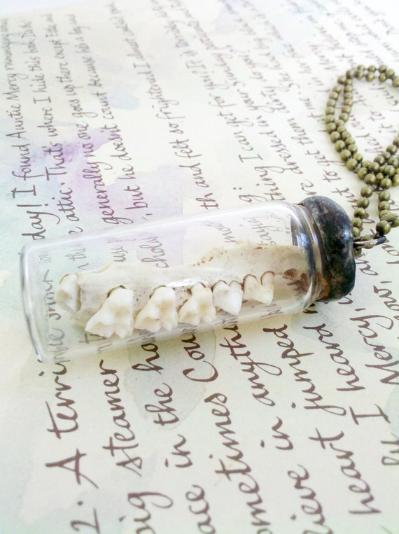 RESERVED for RINALEE Jawbone and Teeth Specimen Vial Soldered Pendant Creepy Necklace - Jawbreaker
