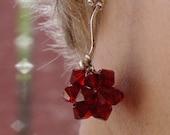 Red Valentine Crystal Star Earrings