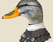 Female Duck print 5x7